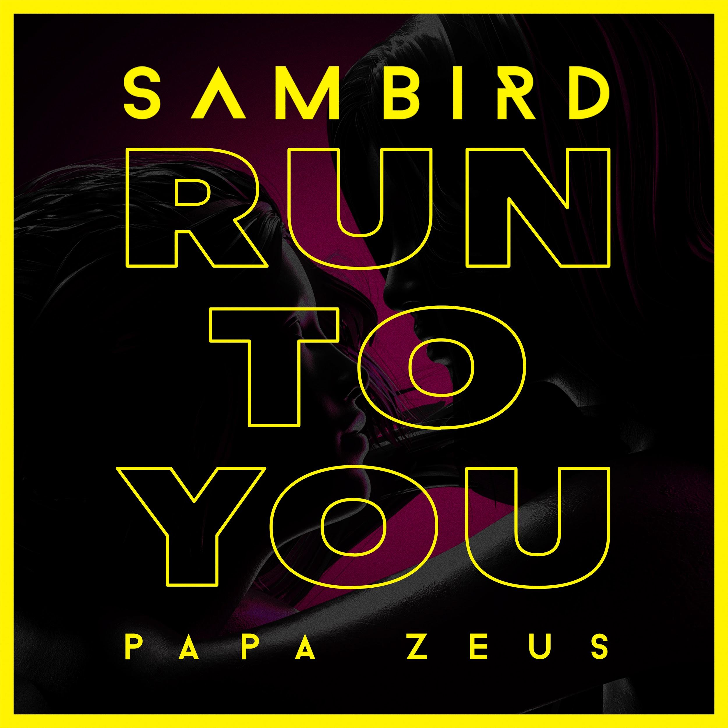 "Sam Bird and Papa Zeus ""Run To You"" official single artwork"