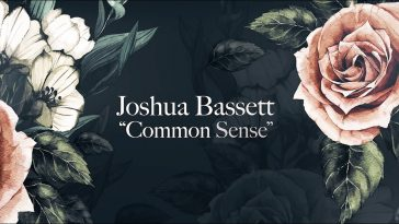 joshua bassett commmon sense music video